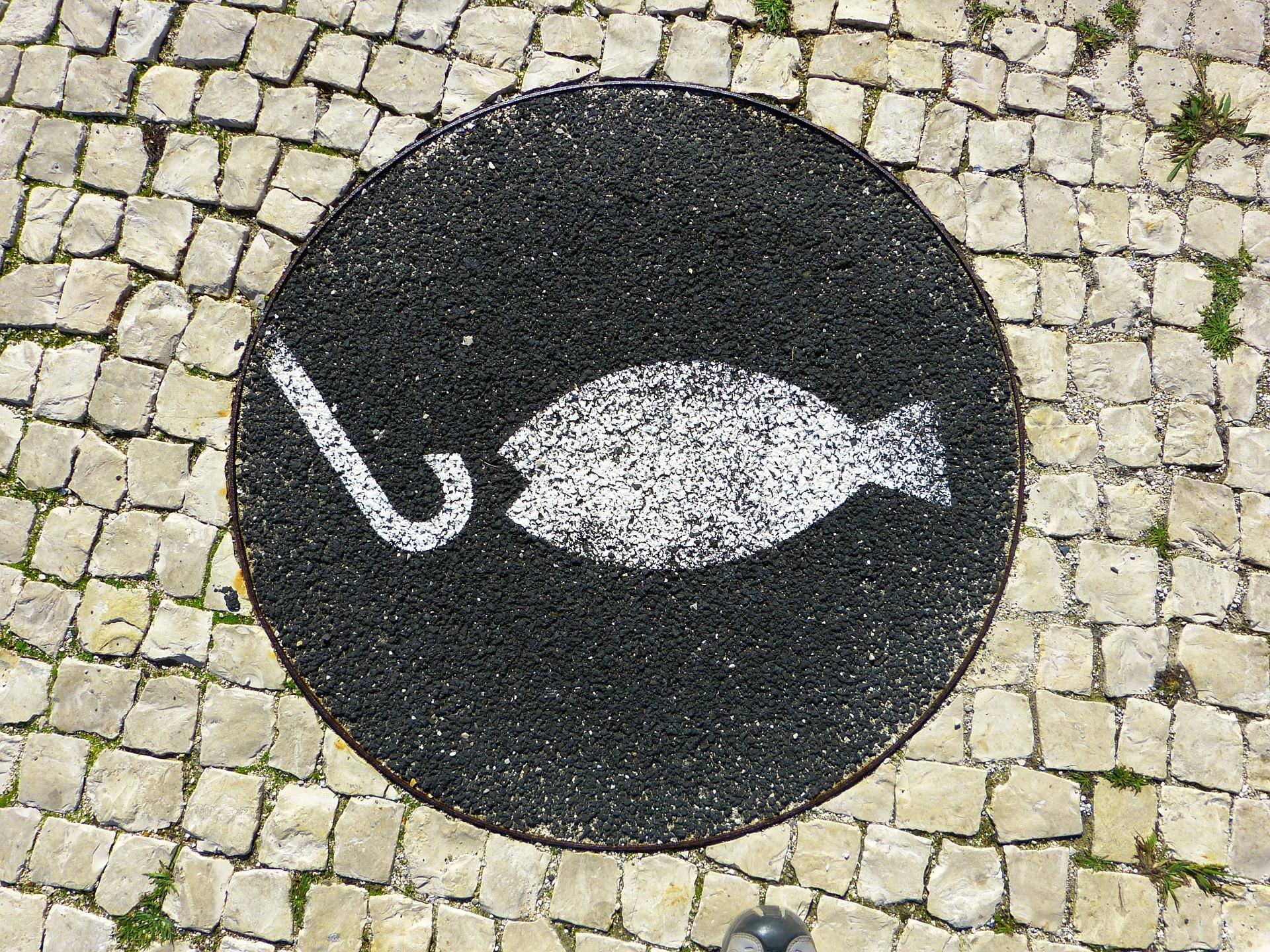 Menù degustazione pesce