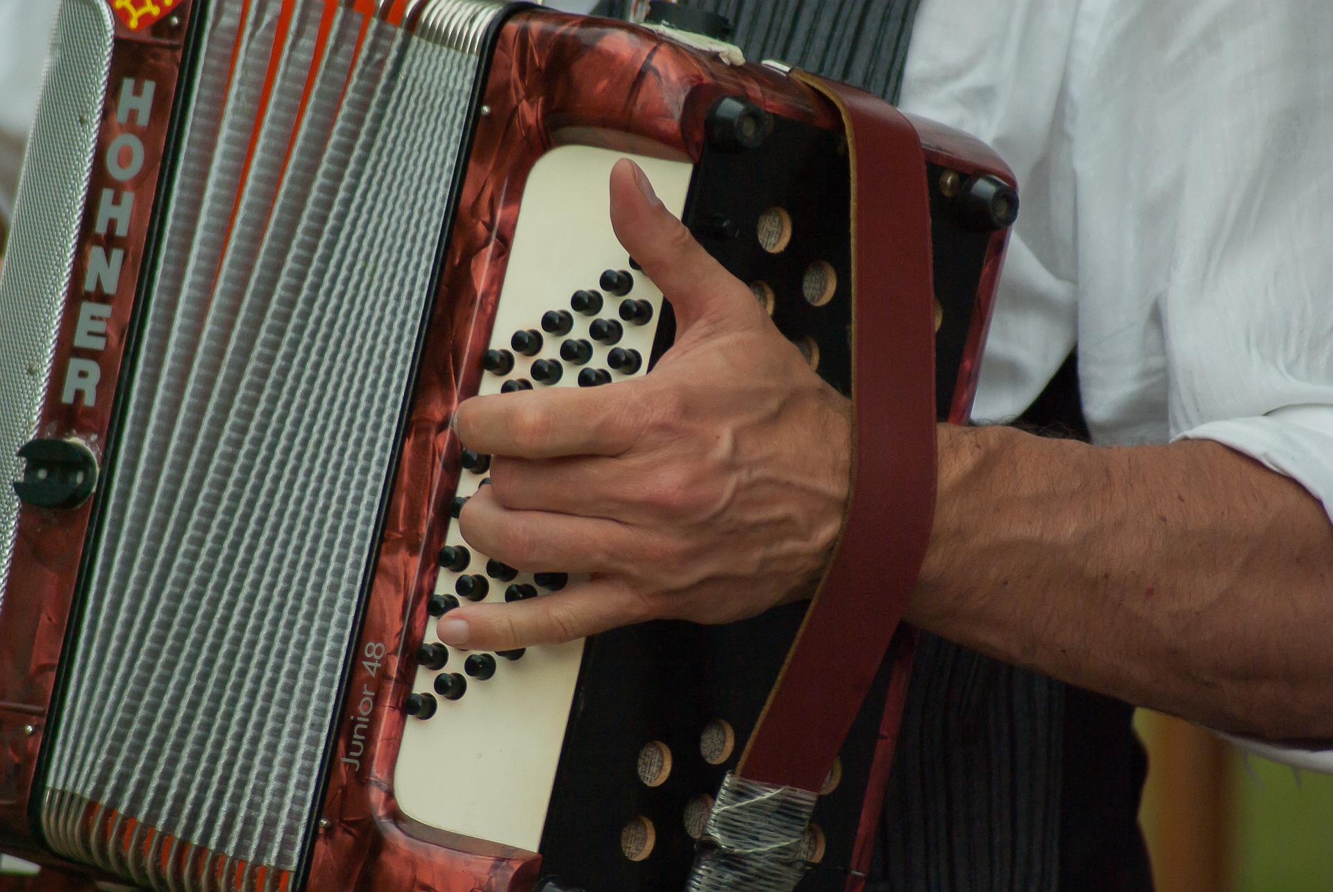 La fisarmonica di Ugo Viola