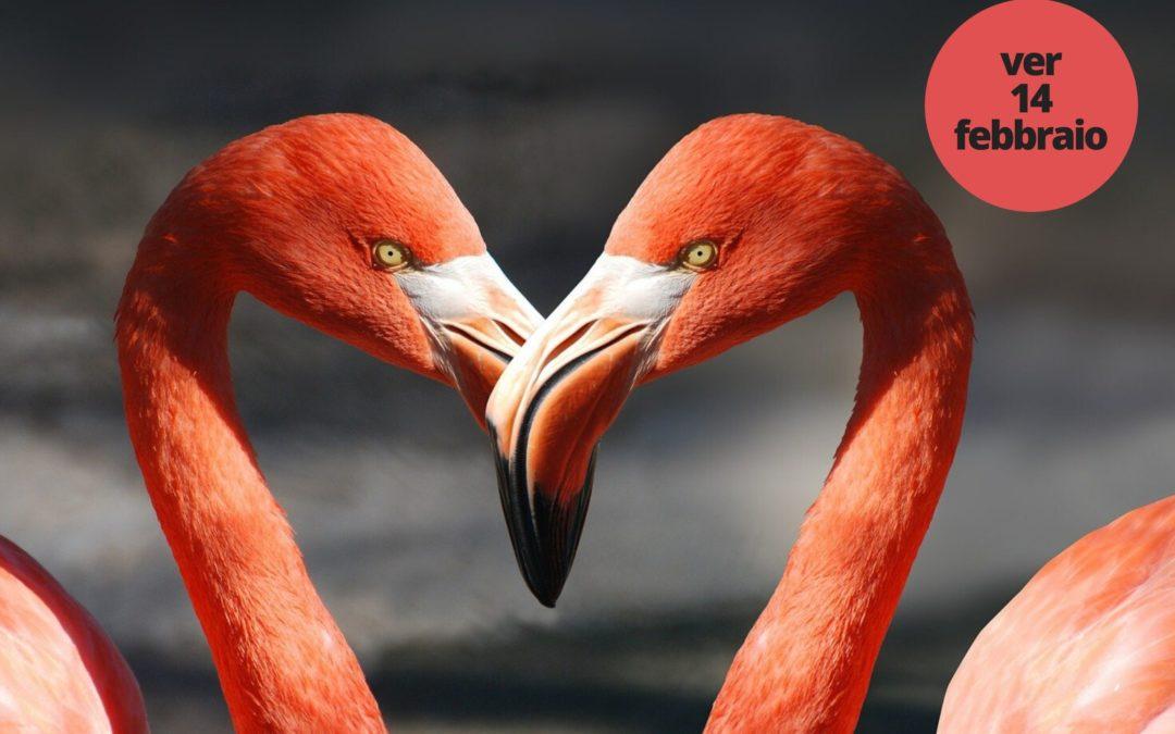 Serenate al tavolo per San Valentino
